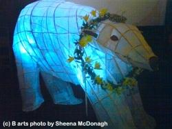 white bear - photo sheena mcdonagh